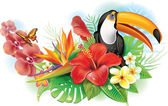 Photo Red hibiscus, toucan and tropical flowers