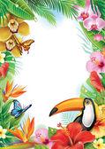 Fotografie Rahmen mit tropischen Blumen, Schmetterlinge und Tukan