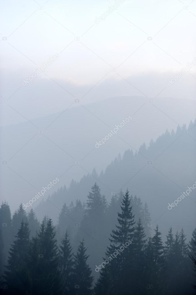 Mountains with trees and fog