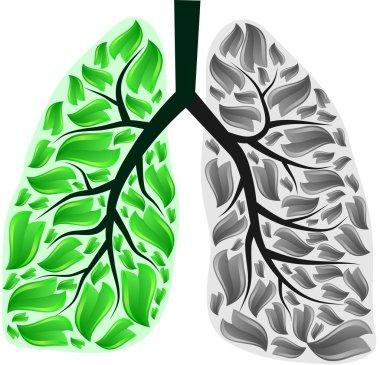 Lungs in danger