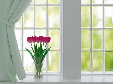 Tulips on a windowsill.