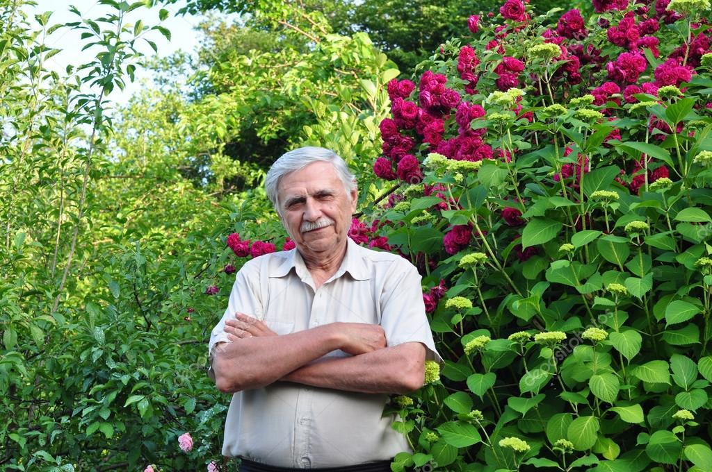 Old male gardener