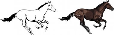 Two galloping horses vector