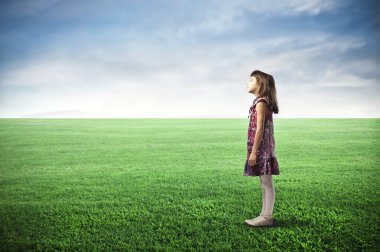 A child is standing in a large grace field. stock vector