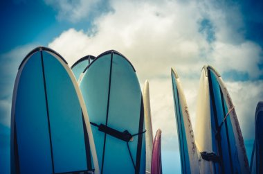 Retro Styled Vintage Surf Boards In Hawaii