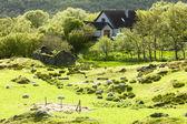 Krajina poblíž nedd, Vysočina, Skotsko