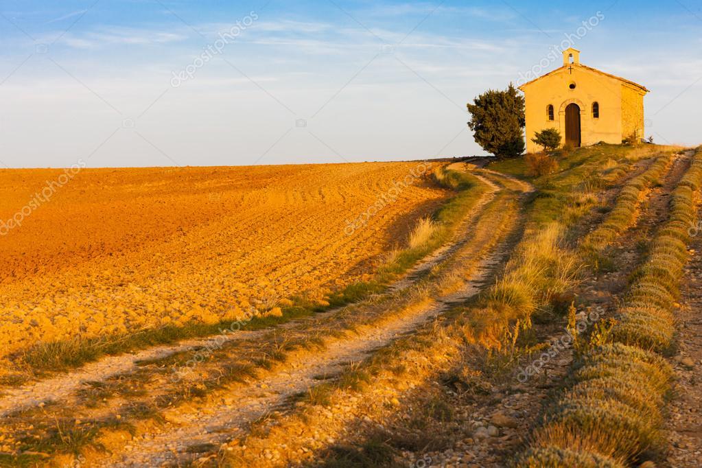 Chapel with lavender field, Plateau de Valensole, Provence