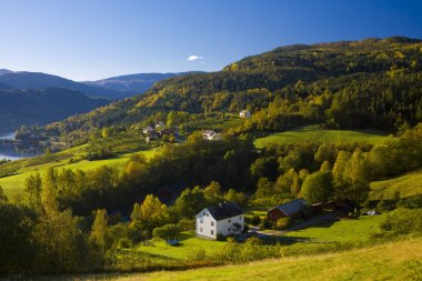 Landscape near fjord Ulvik
