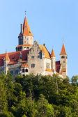 Fotografie hrad Bouzov