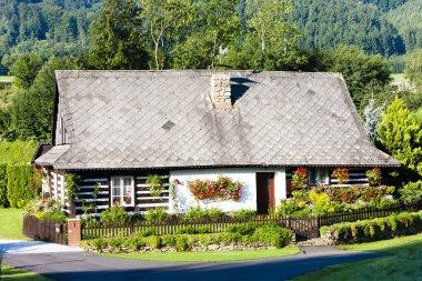 Cottage with plants, Czech Republic stock vector