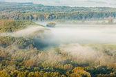 podzimní Les v mlze