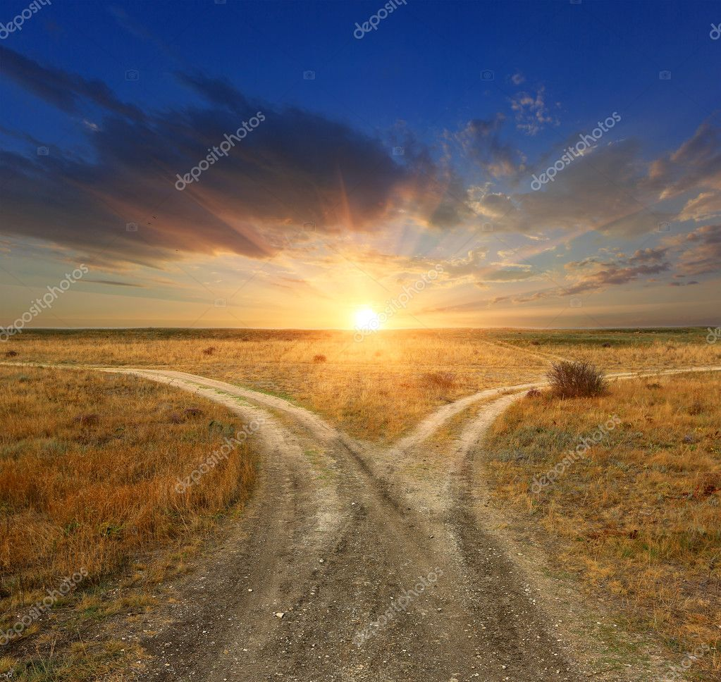 Fork roads on sunset background
