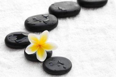 zen stones with frangipani flower