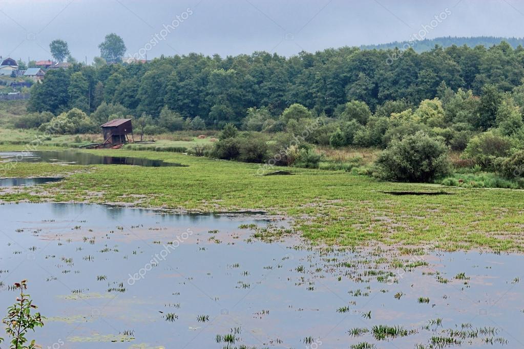 Marsh and village