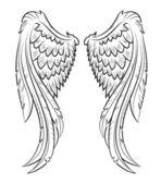 Fotografie vektor křídla