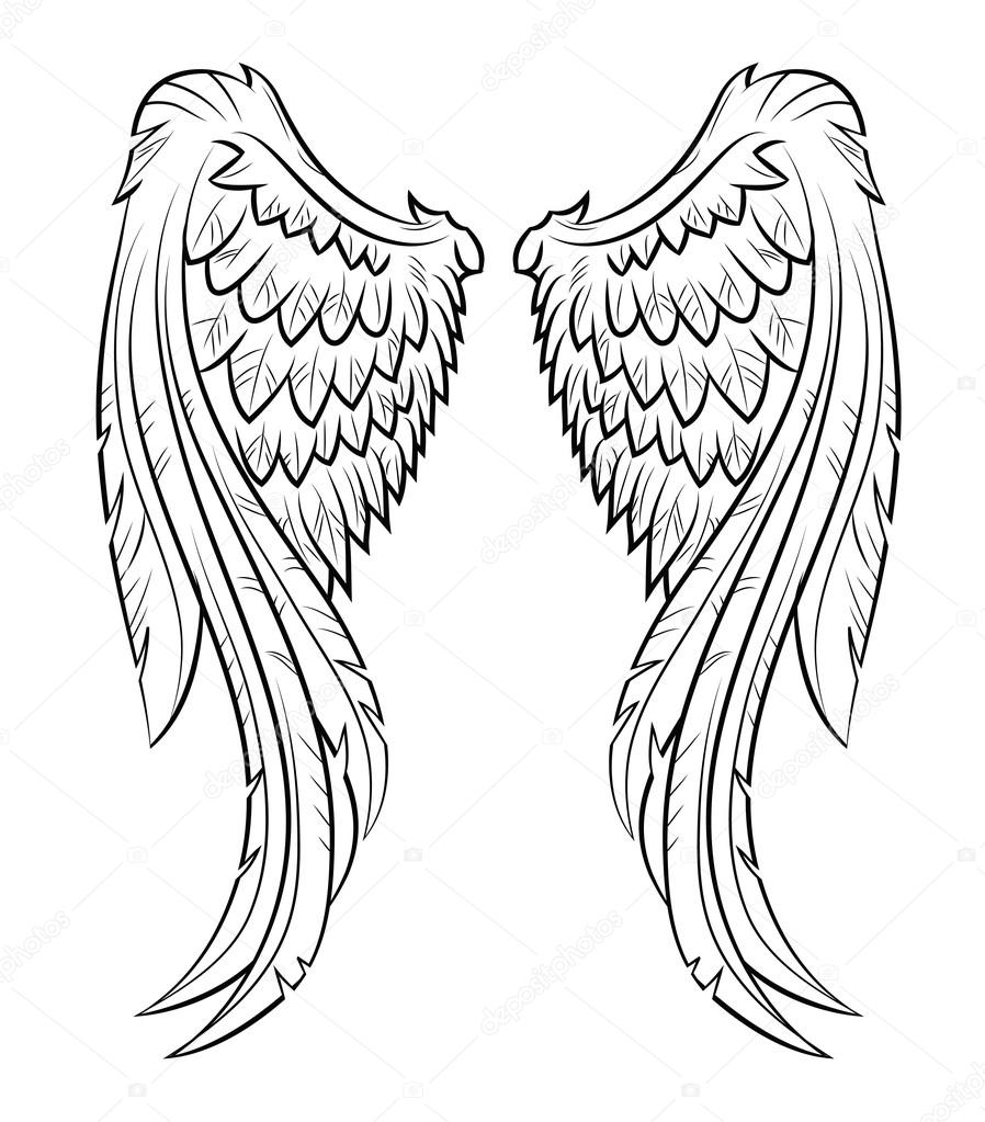 wing stock vectors royalty free wing illustrations depositphotos
