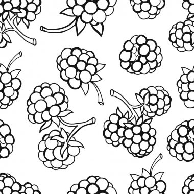Seamless pattern  of berries