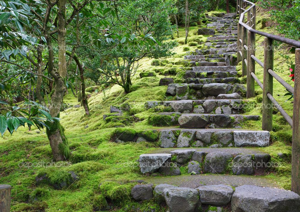 Steintreppe Garten asiatischer garten steintreppe stockfoto bobkeenan 23005342