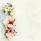 Fotografie s pozdravem květinovým kartu s jarní květy na opar pozadí v pastelových barvách