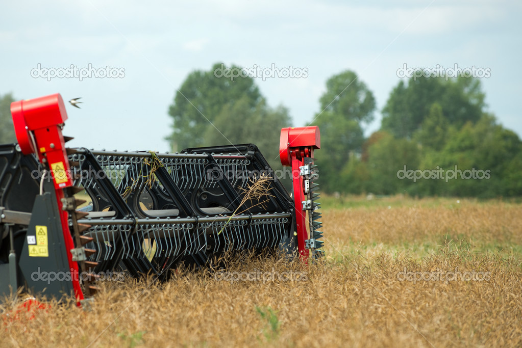 Combine grain head  — Stock Photo © Madiz1 #37254877