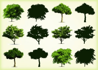 Card with set tree. Vector on white background stock vector