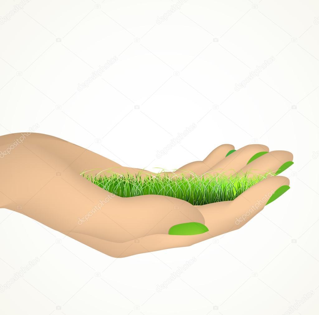Hand holding green grass. Vector