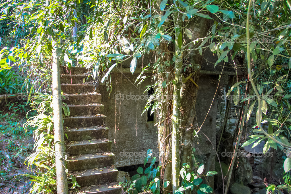 De Magische Tuin : Spirituele dag in een magische tuin weekblad de brug