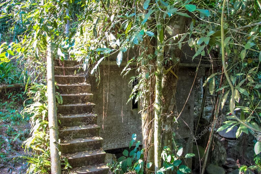 De Magische Tuin : Magisch boeddha tuin tanim koh tuin magisch eiland samui