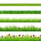 Fotografie Big Green Grass And Flowers Set