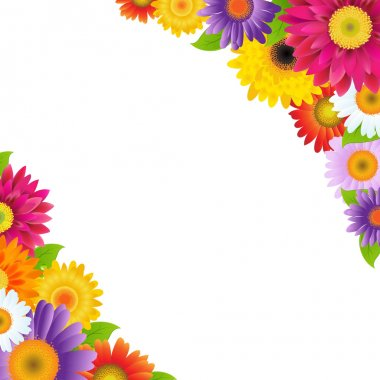 Colorful Gerbers Flowers Border