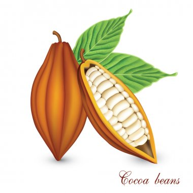Cocoa bobs