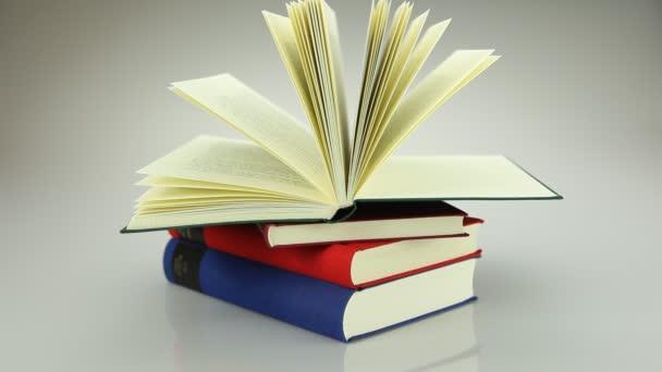 A megnyitott könyvet 1
