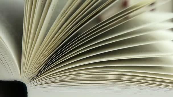 Kniha 3