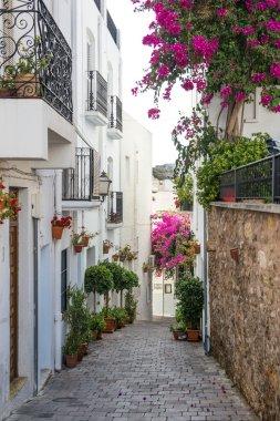 Side Street in Mojacar Village