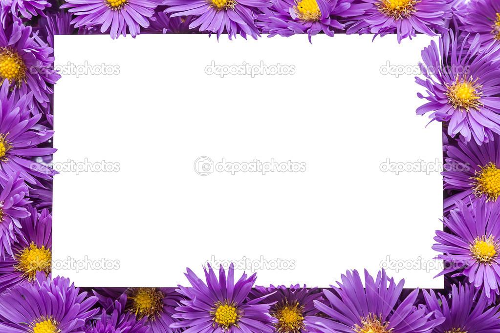 Marco / borde de flores de color púrpura — Fotos de Stock © ra3rn_ ...