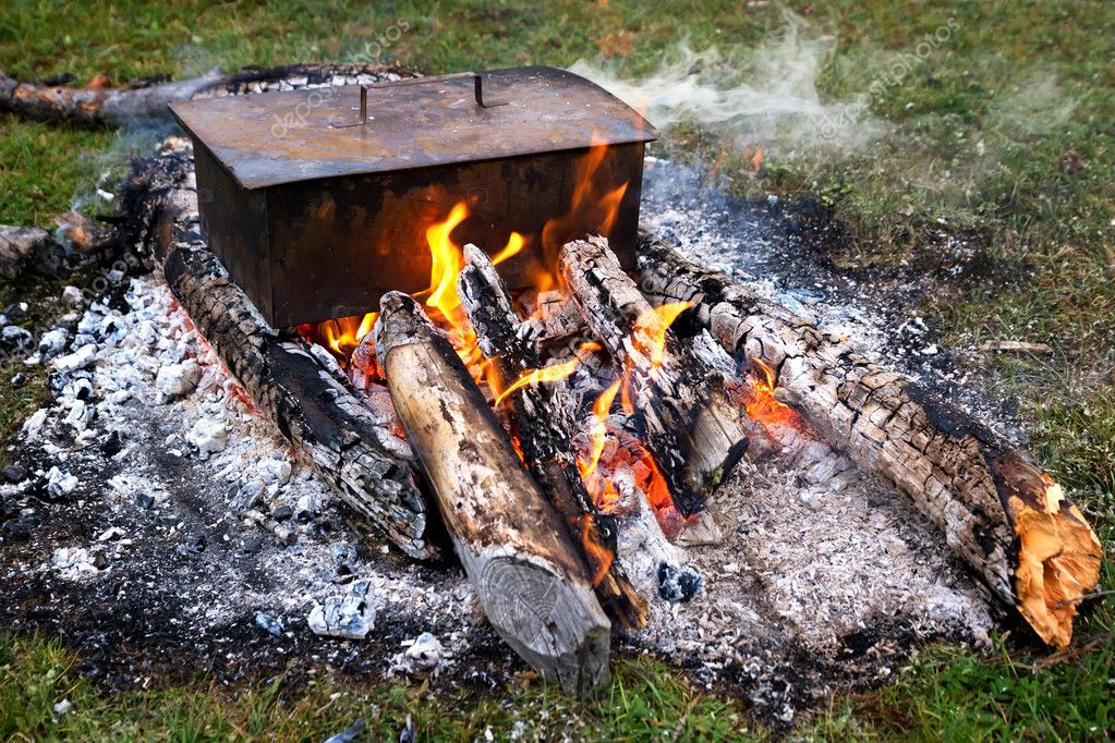Cooking fish on a fire