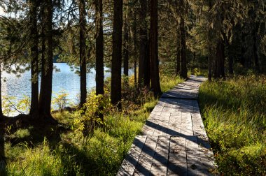 Wooden boardwalk along the lake in the mountains
