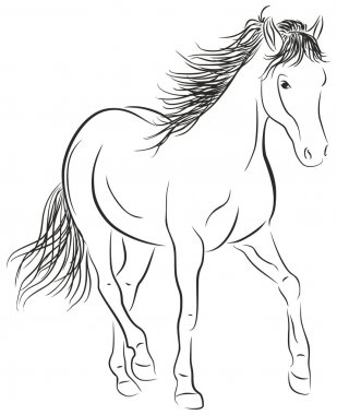Calligraphic Horse - Illustration
