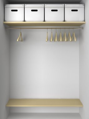 Empty wardrobe with hangers and boxes