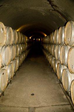 Aging Wine Barrels
