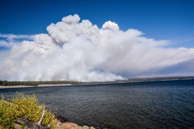 Forest Fire at Lake Yellowstone