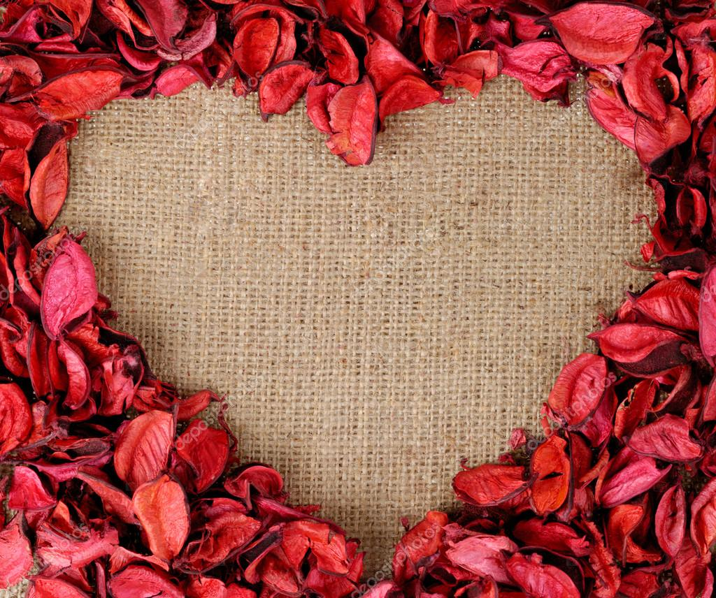 Heart shaped frame made from red petals — Stock Photo © StockMax ...
