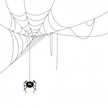 Spider and a Web