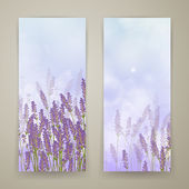 Lavender Banners