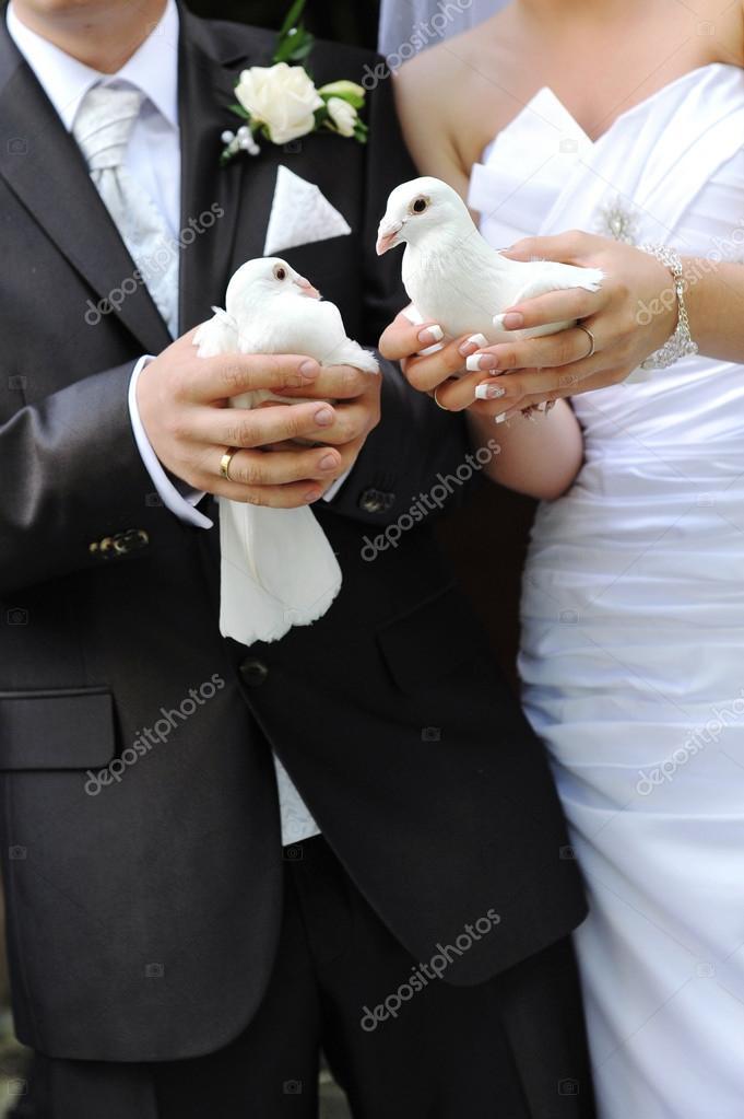 острова свадебные фото кольца голубей хотя подобный