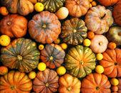Photo Orange pumpkins