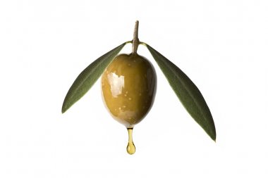 A drop of olive oil falling from one green olive isolated on a white background stock vector