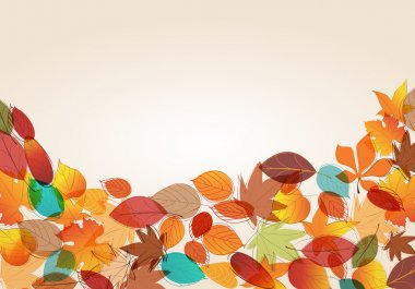 Colorful autumn leaves illustration