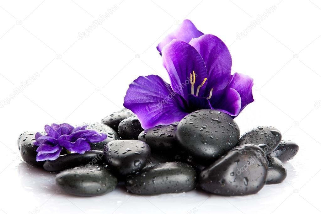 Spa Steine und lila Blume, isoliert auf weiss. Blume in Stein ...