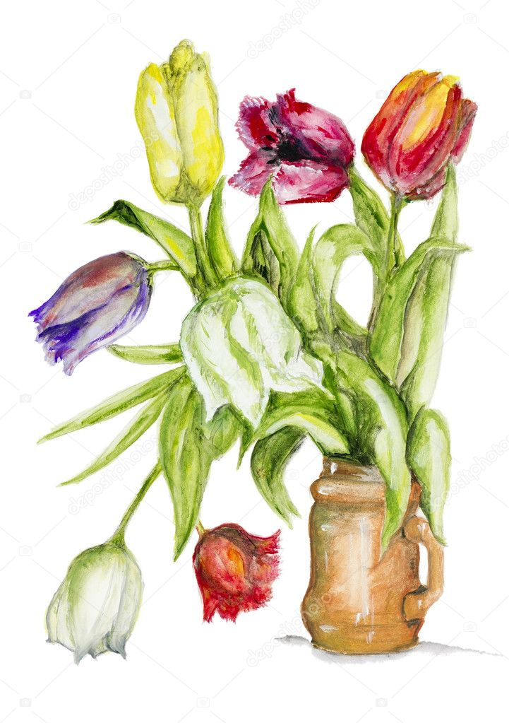 Tulips flowers in ceramic pot isolated